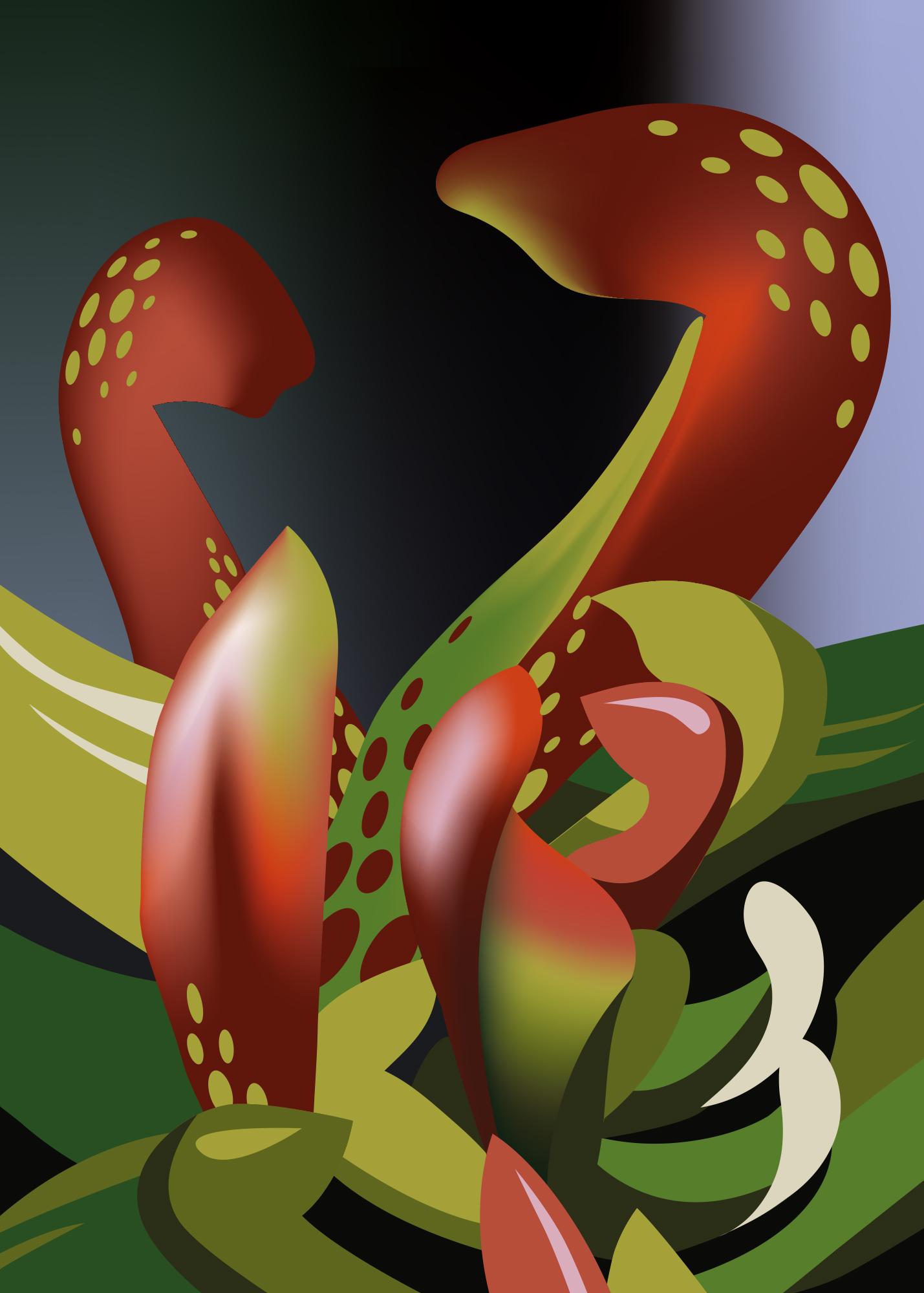 Sarracenia Psittacina (Papageien-Schlauchpflanze), Laura Stoppkotte