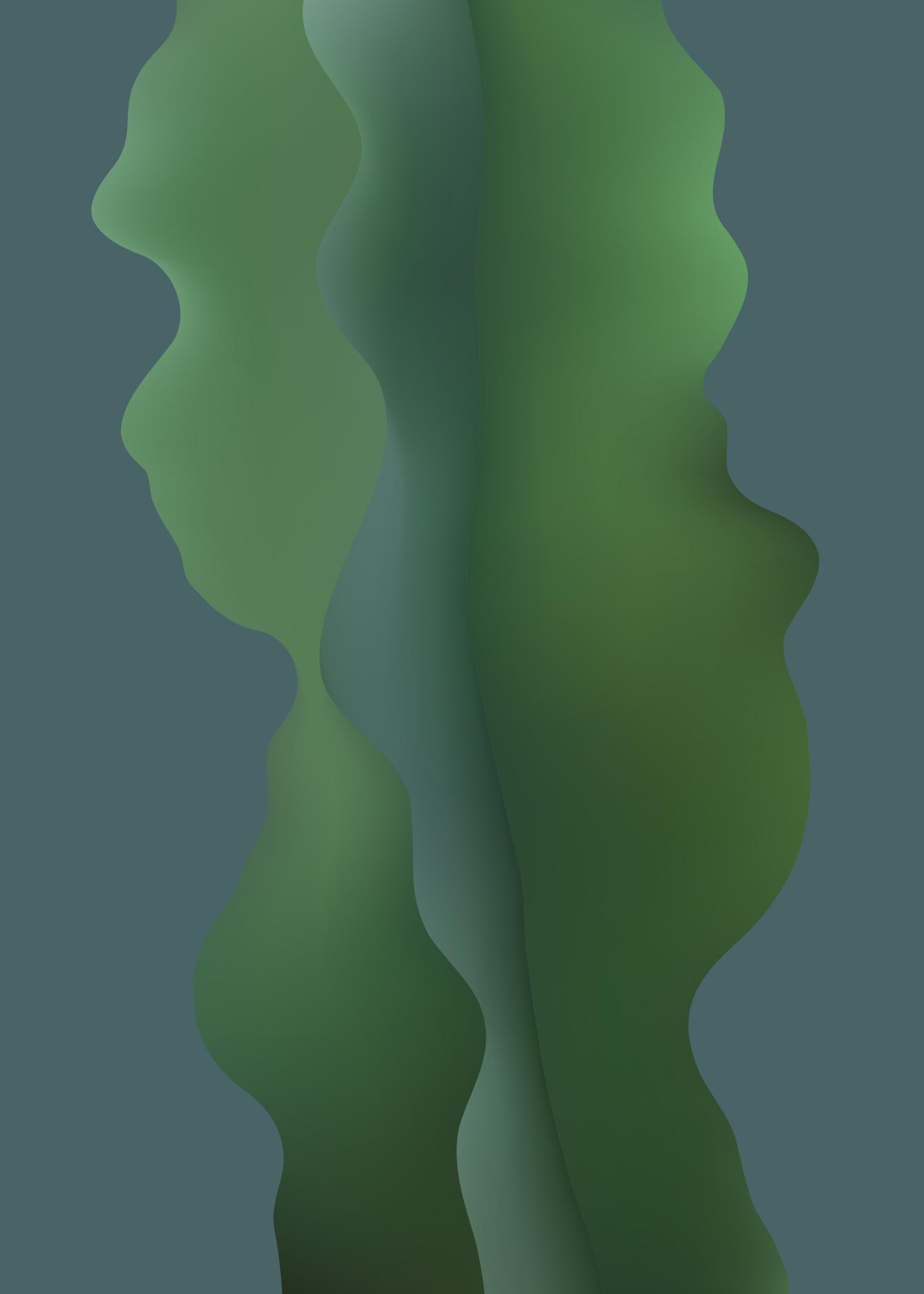 Cereus jamacaru (Säulenkaktus), Adrian Terzic