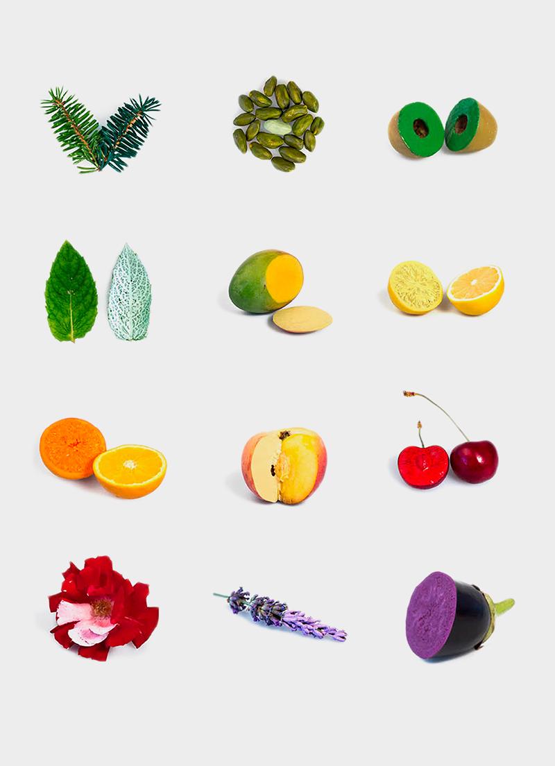 Farbe eines natürlichen Objekts vs. Farbton einer gleichnamigen künstlichen Farbe. Von Samara Hammud, Mascha Kobylenko, Elana Schtulberg.